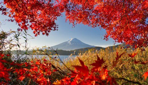 河口湖で燃えるような紅葉と雪化粧した富士山を撮影してきた!